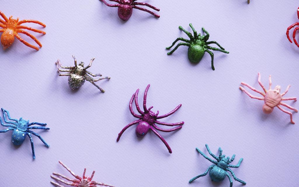 Arachnophobie - Angst vor Spinnen